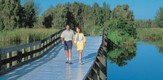 Floridas_FL_080401_g3.jpe