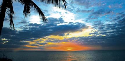 Floridas_FL_080401_g6.jpe