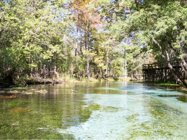 Ruth B. Kirby Gilchrist Blue Springs State Park