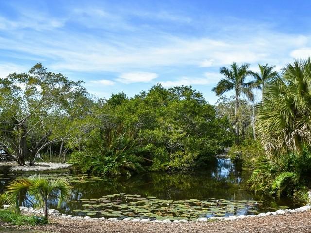 Selby Botanical Gardens, Sarasota