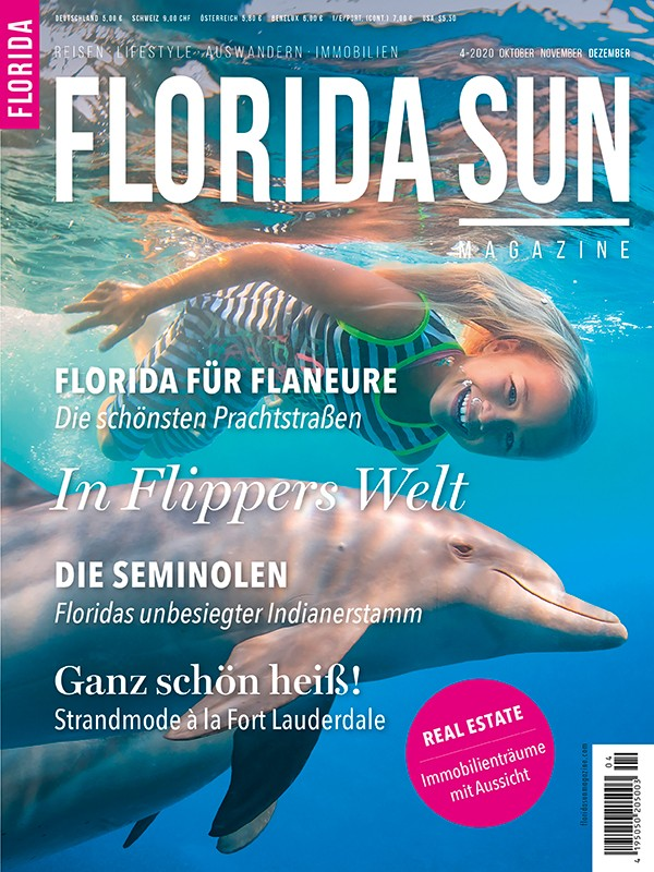 Cover 4-20