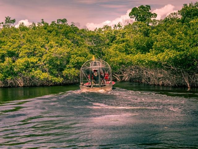 Everglades: Sumpfbootstour (Foto © Martina Birnbaum/Shutterstock.com)