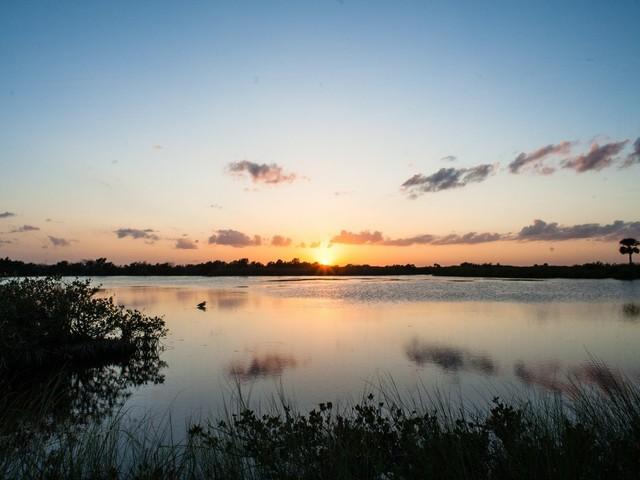 Merrit Island National Wildlife Refuge (Foto © francociccio/Shutterstock.com)