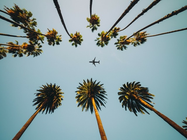 Flugzeug in Florida