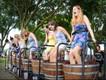 Harvest Grape Stomp Festival - Lakeridge Winery