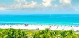 MiamiNews0317_B1_g.jpe