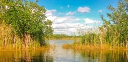 RiverOfGrass_150401_B1_g.png