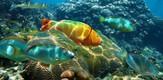 AquariumEncounters_B7_g.jpe