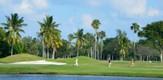 MiamiSports_140328_B6_g.jpe