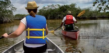Everglades_120701_g1.jpe